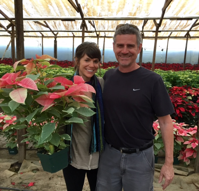 Buying Poinsettias for our home & office in Antigua, Guatemala